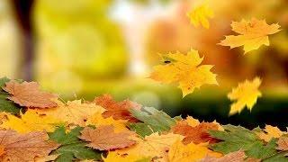 Autumn Leaves - Arabic Lyrics