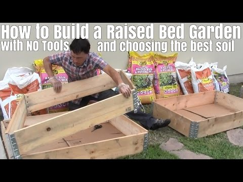 How To Build Raised Bed Garden With No Tools Choose The Best Soil