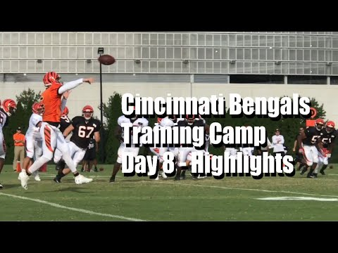 Cincinnati Bengals Training Camp - Day 8 Highlights
