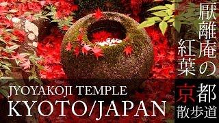 京都観光 嵯峨野 厭離庵(Autumn leaves of Enrian temple in Kyoto,Japan) / 京都散歩道