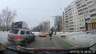 Использовал служебное положение, чтоб перевести через дорогу хромого пса.