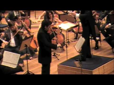 Schumann Violin Concerto 1 mov part 1