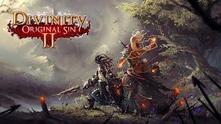 Обзор Divinity Original Sin 2 | Новая история на старый лад | Альфа-версия