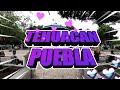 Video de Tehuacán