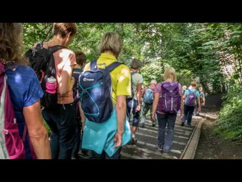 Kilmarnock Ramblers, Water of Leith Walkway, July 30th 2017