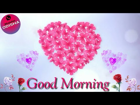 Good Morning what's app status || What's app status Video ODISHA || 💓