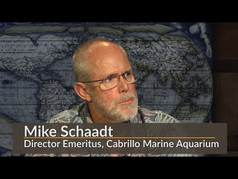 Preserving the Marine Habitat