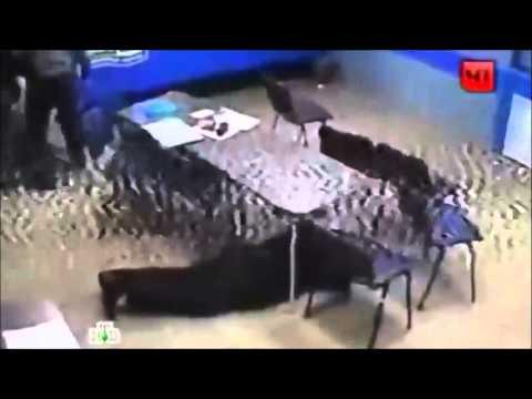 Ограбление Букмекерские Конторы В Москве