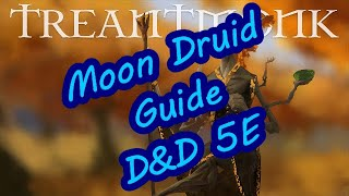 Moon Druid Guide D&D 5E