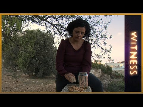 The Seed Queen of Palestine | Witness