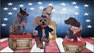 Celebrate America - Starring Shelter Dogs