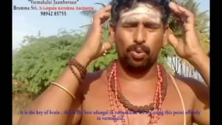 Thoppukaranam(English suptitle)/S.Gopalakrishnan