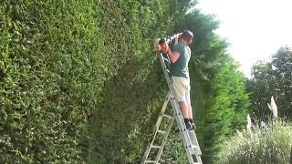 How to Cut a big Hedge. Part 1