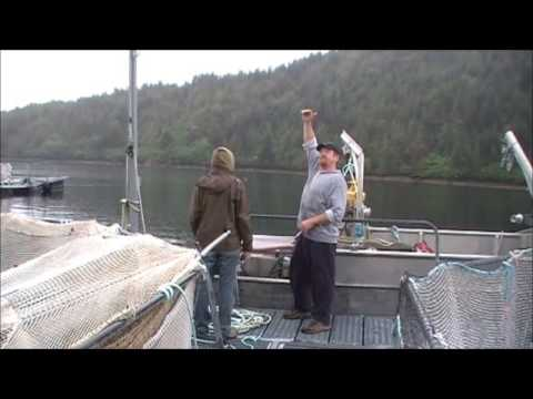 Kyuquot Multi Trophic Aquaculture System Tour 2