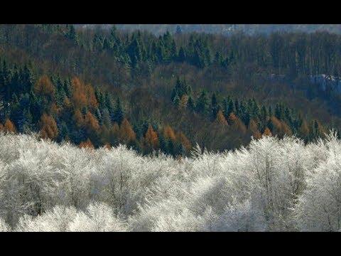 Zima na dobre zagościła w Bieszczadach