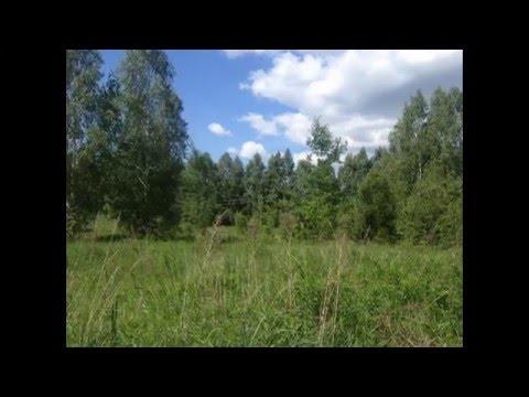 Продаю участок (СНТ) в Орехово-Зуевском районе
