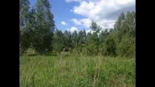 Продаю участок (СНТ) в Орехово-Зуевском районе(www.prestige-oz.ru Продается земельный участок в СНТ