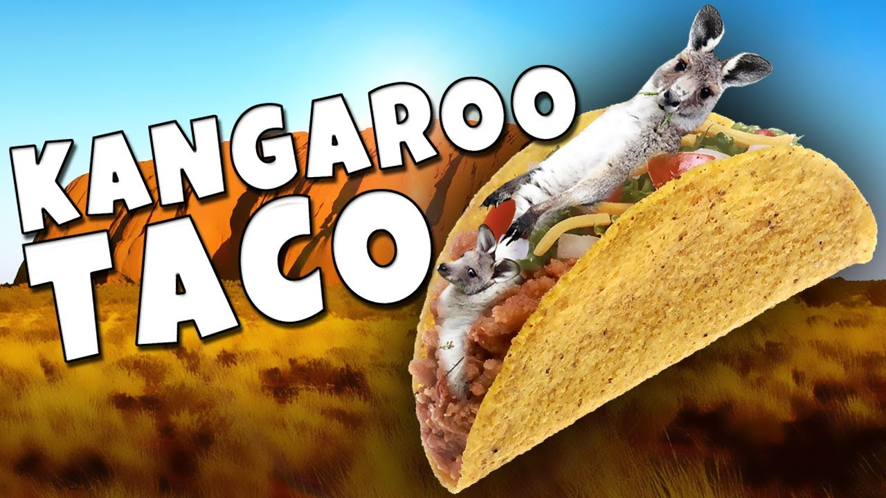 Image result for kangaroo taco