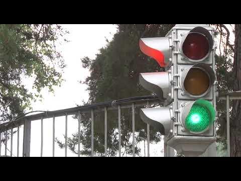 Пятое августа отмечено в календаре как Международный день светофора