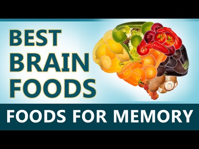Brain Foods - Foods that Helps Increase Your Memory - Brain Foods for Memory - Brain Power Boost