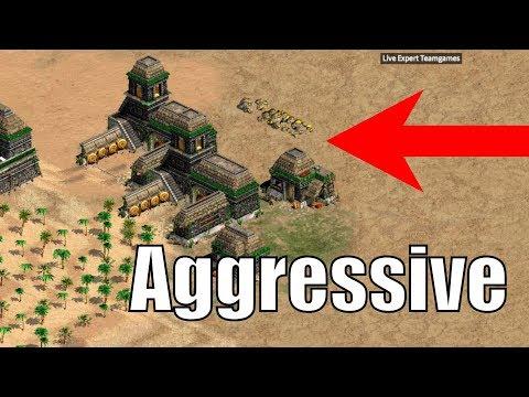 AoE2 - Expert 3v3 -Aggressive Pocket Play vs Indian Boom?