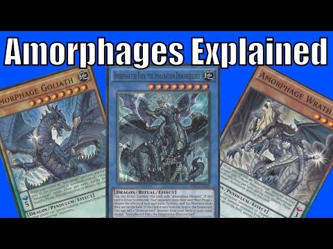 Amorphage Deck Explained - In depth Analysis