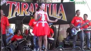Download lagu NEW TARANTULA LUKA DIATAS LUKA MP3