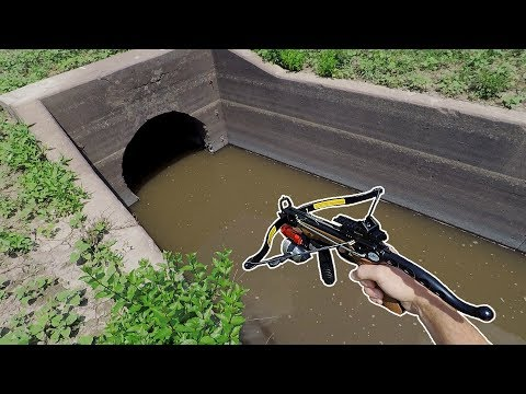TINY CROSSBOW Fishing In A CREEK!!! (BIG FISH)