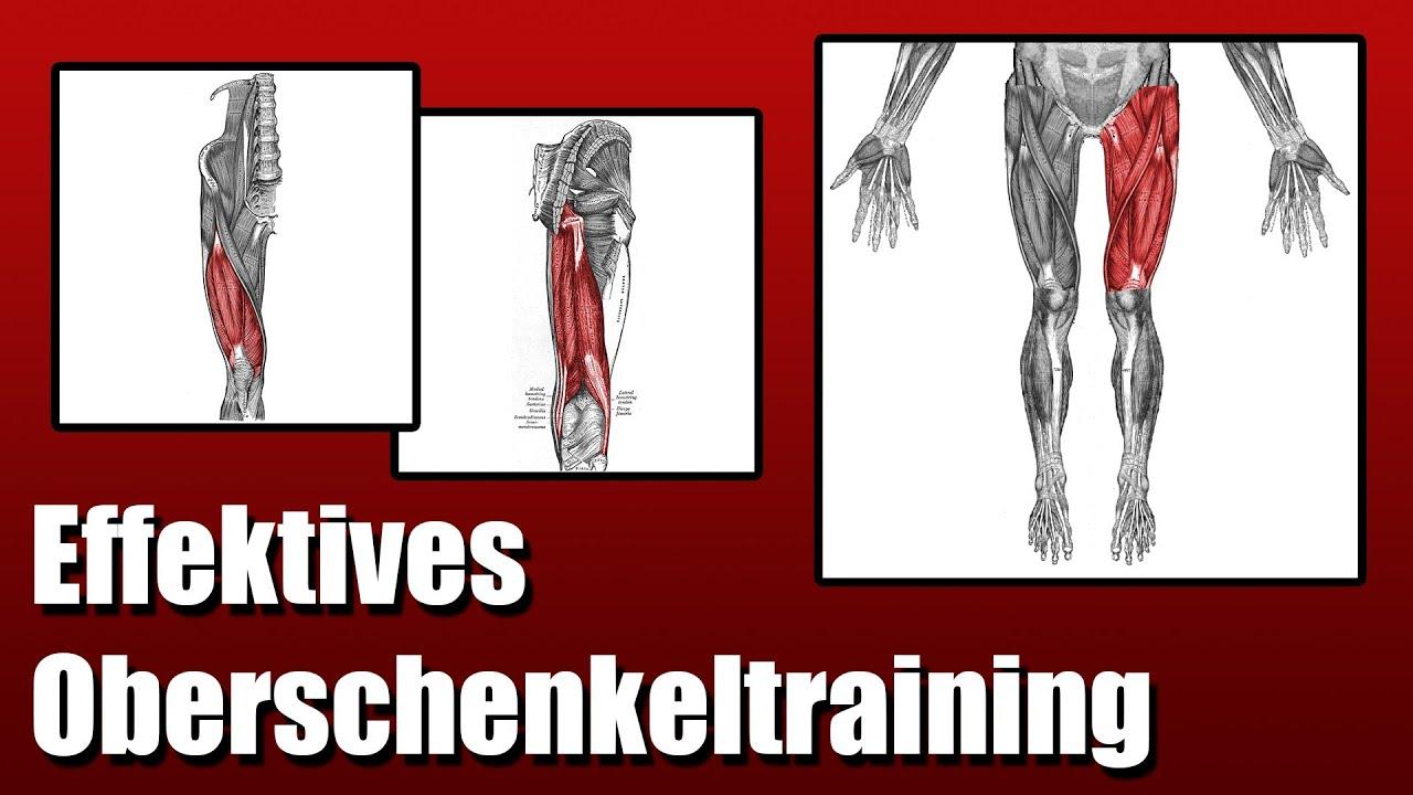 Oberschenkel effektiv trainieren