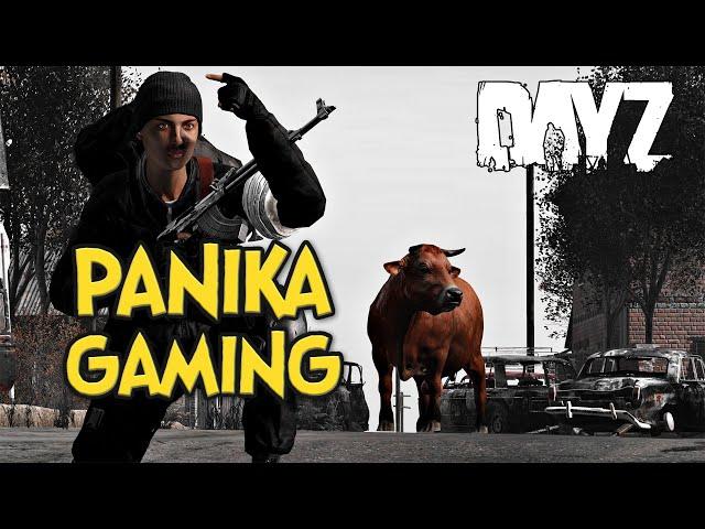 PANIKA GAMING - DAYZ | GAMEPLAY PL