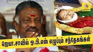 OPS Plans Hunger Strike On March 8th Demanding Investigation Into Jayalalitha's Mysterious Death  