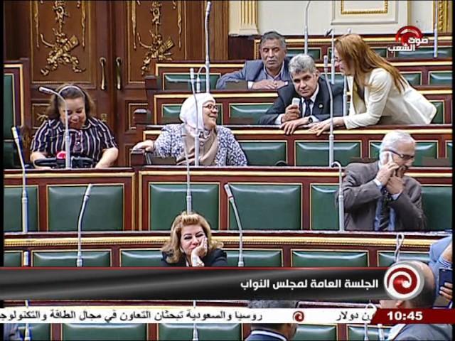 جلسة 2017⁄05⁄30׃ الجلسة العامة لمجلس النواب