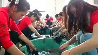 Synthetic Hair Extension & Human Hair Weave Suppliers