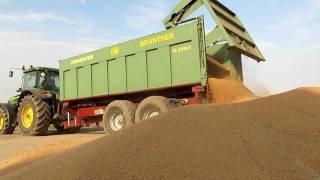 Żniwa 2011 Pszenica - Harvest wheat część 3 (John Deere Team)