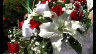 Свадьба Сергей и Александра.flv