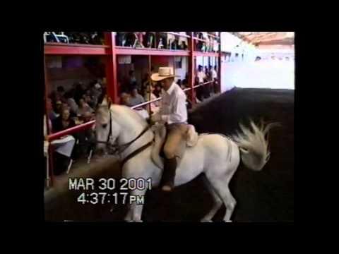 DVD116-C Boda de oro-Cortijo Upn-Marzo 30 2001 Video Mendoza 2.02H -15C