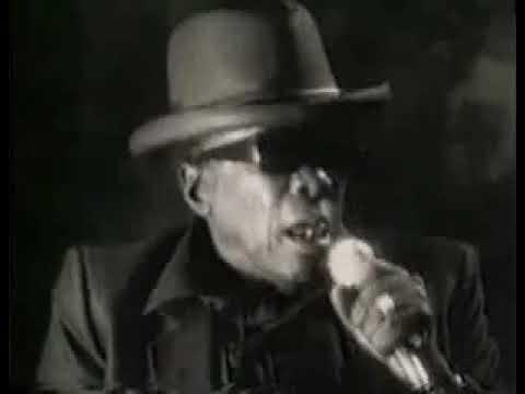 Carlos Santana & John Lee Hooker The Healer