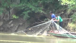 中国雲南省澜沧县 メコン川 流し網漁 魚は少ししか捕れないようです。