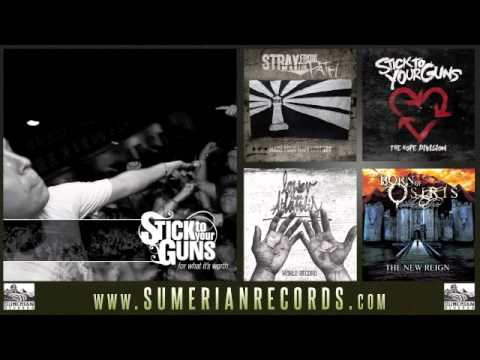 STICK TO YOUR GUNS - Colorblind