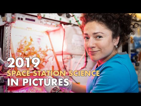2019 Space Station Science in Pictures