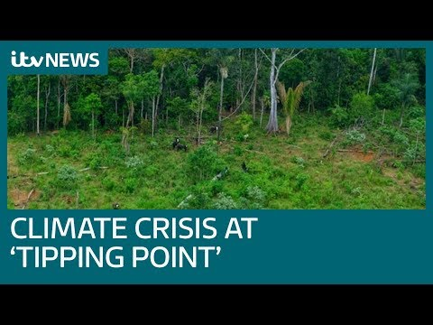 Climate crisis at 'tipping point', scientists warn | ITV News
