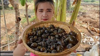 Yummy Cooking Snail Recipe - How to cook snail delicious - cooking skill