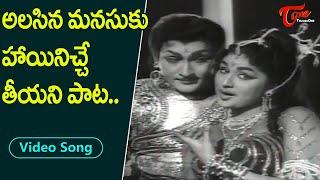 అలసిన మనసుకు హాయినిచే తీయని పాట..| Shoban Babu, Kanchana Beautiful Duet | Old Telugu Songs