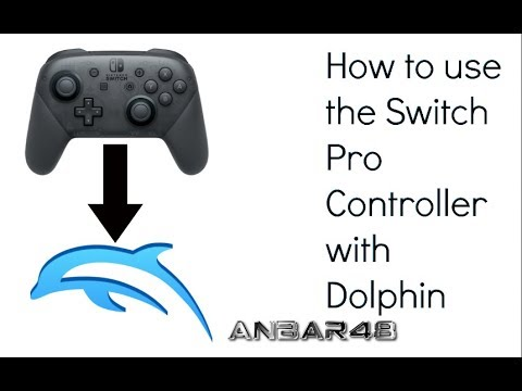 How to use a Switch Pro Controller with Dolphin on Mac or PC