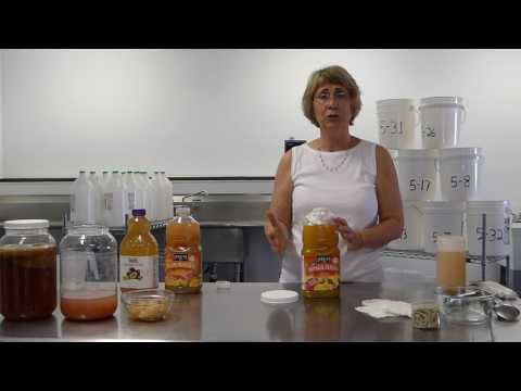 World Kombucha Make Vinegar