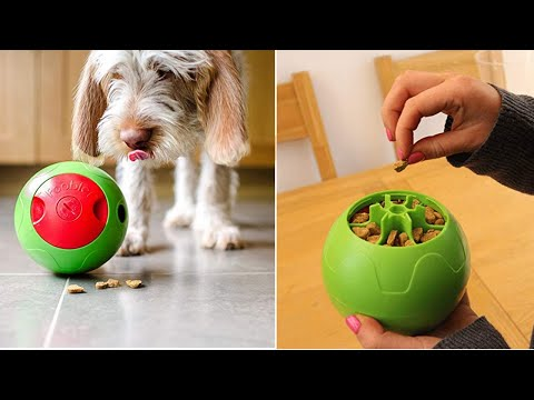 Download Youtube: 8 Robots Your Pets Wants
