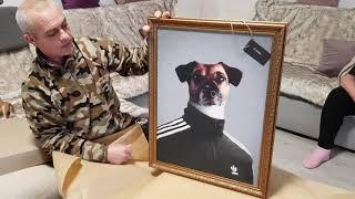 Купил индивидуальные портреты для наших любимых домашних питомцев