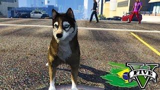 """GTA V: BRASIL RP - MEU NOVO CACHORRO """"HUSKY"""" de OLHO AZUL!!! #117"""
