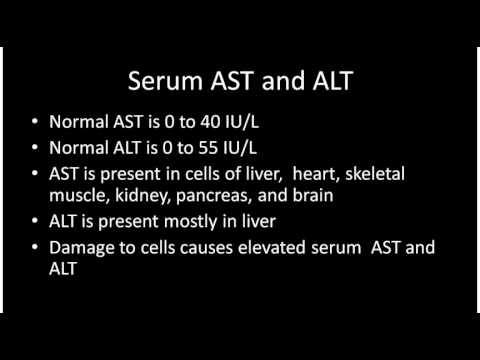 What does ALT (SGPT) mean in a blood test?