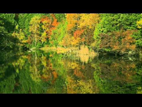 Meditation  Music10 minquiet lake~your mind healed